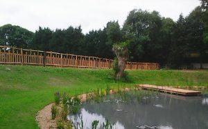 Oak paling Fence Faccombe