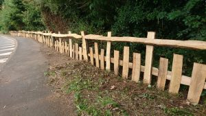 #cleft oak fence #Charlecote #Traditional fence